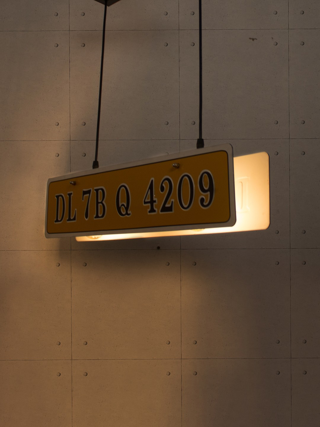 Licence Plate 2 Light Liner Pendant Lamp